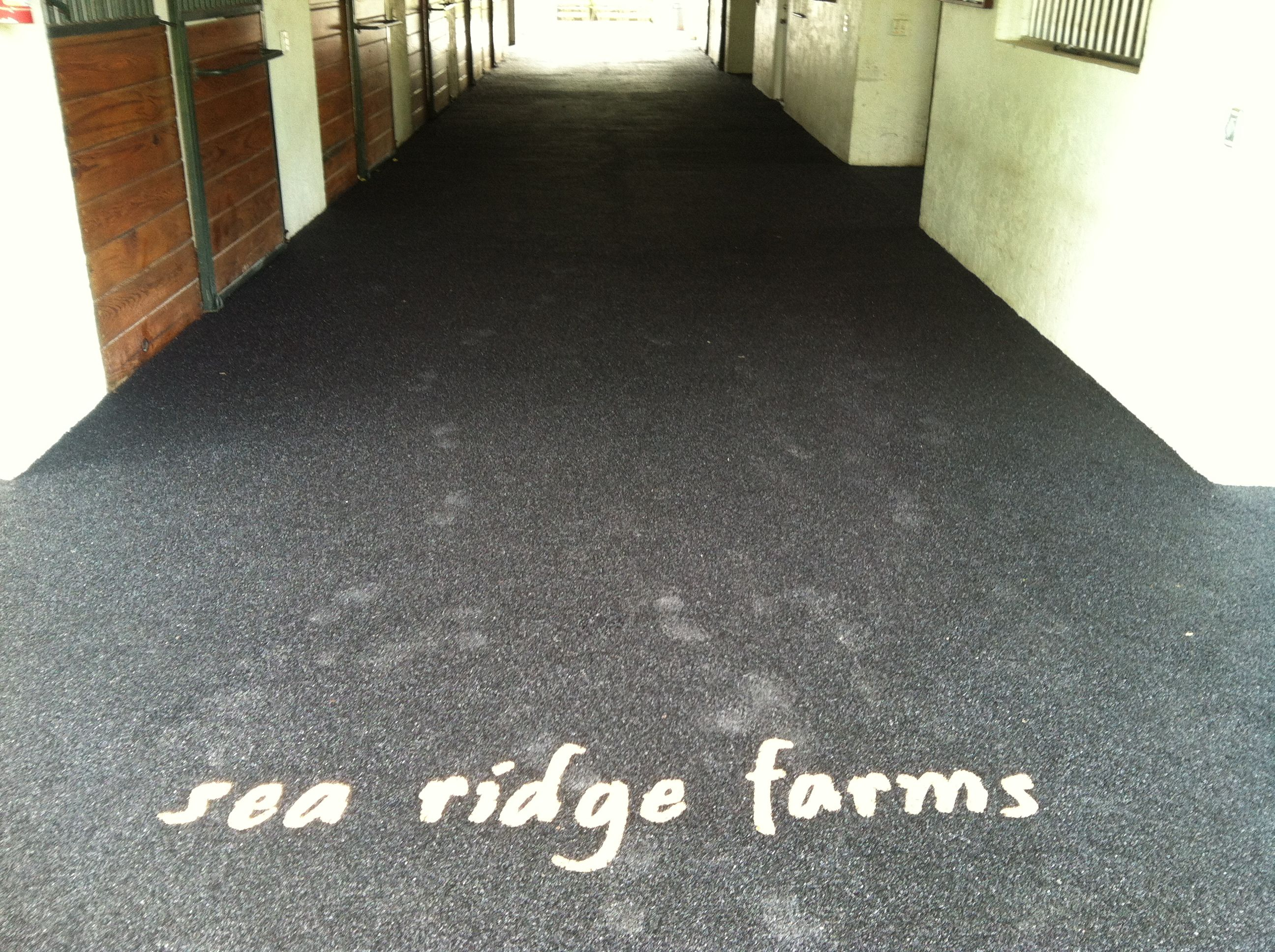 Equine Rubber Surface Aisle Way With Custom Logo In Wellington Fl Www Splashscapes Net Swimming Pool Installation Pool Installation Swimming Pools Inground