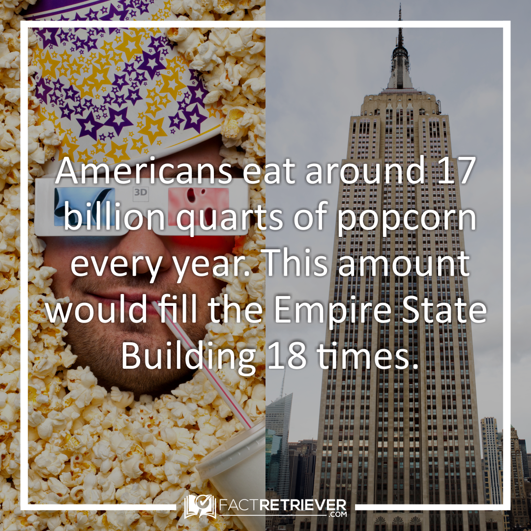 49 Delicious Facts about Popcorn | Popcorn Popcorn facts ...