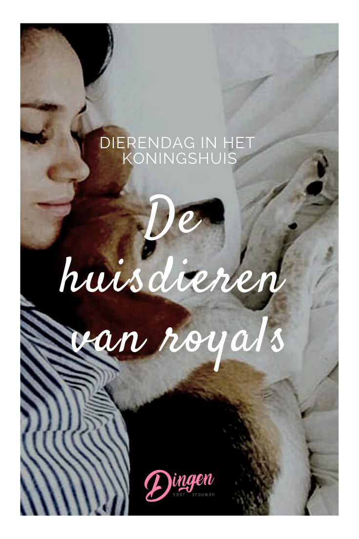 Dierendag In Het Koningshuis De Huisdieren Van Royals