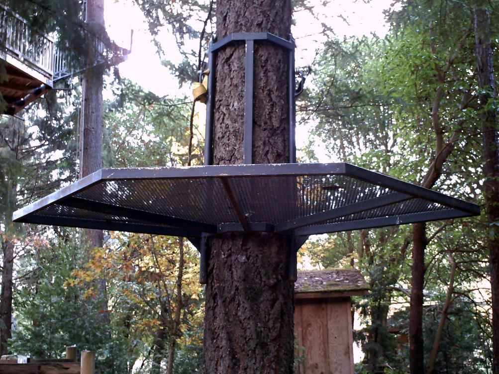 Image Result For Tree Stands Plans Hunting And Outdoors