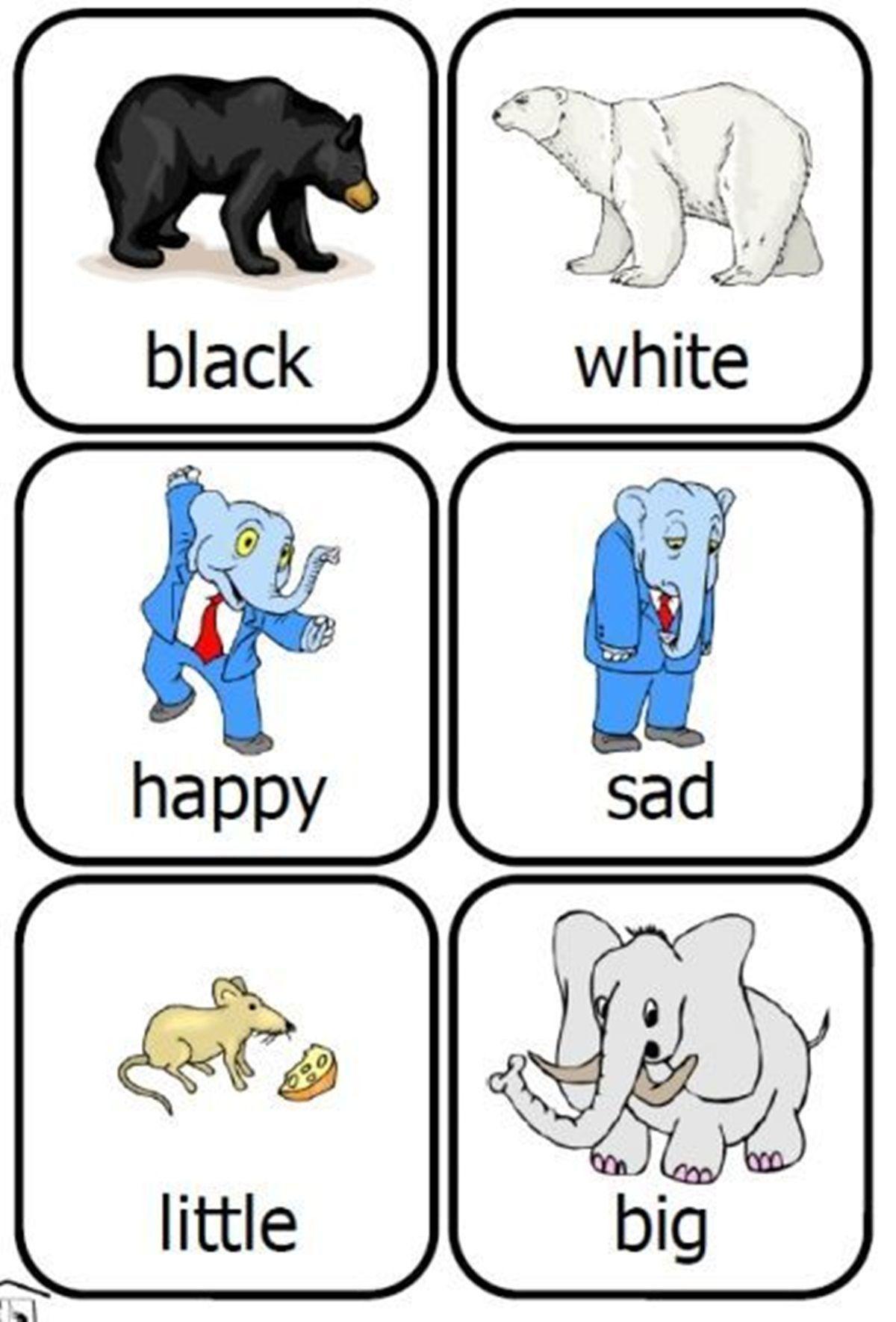 Memorable Opposites Worksheets