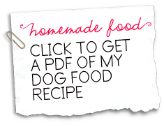 Click to get a pdf of my homemade dog food recipe doggy gifts and foods sadie shih tzus homemade dog food recipe forumfinder Choice Image