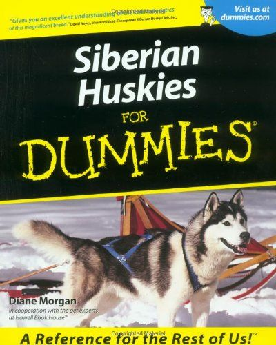 Facts About The Siberian Husky An Excellent Dog Breed Siberian