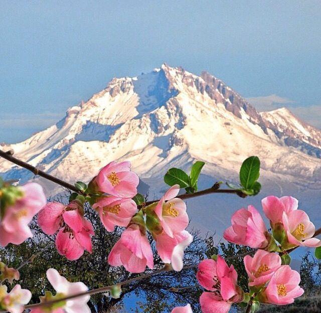 Photo of erciyes-berg, kayseri, cappadocia, turkey- erciyes-berg, kay …