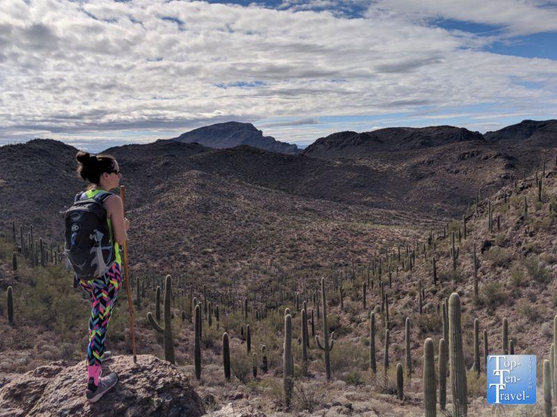 Hiking hotspot tucsons hidden canyon bowen trail top
