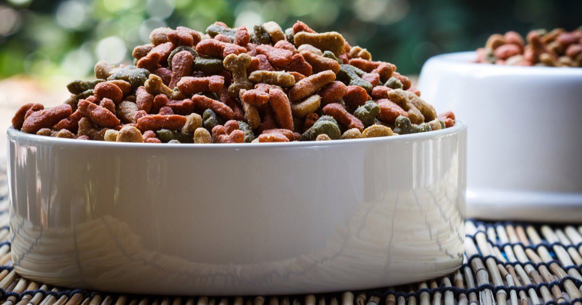 Company Recalls Shipments Of Dog Food After Reports That