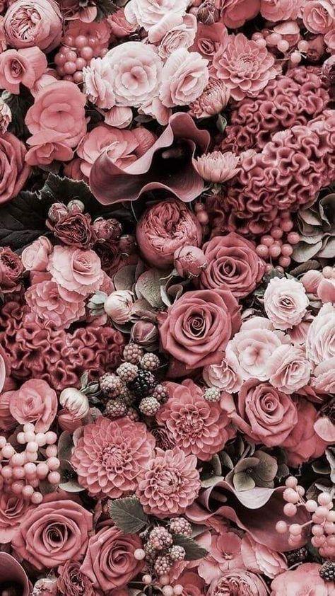 данном картинки для ватсапа цветы новомодные патогена остаются