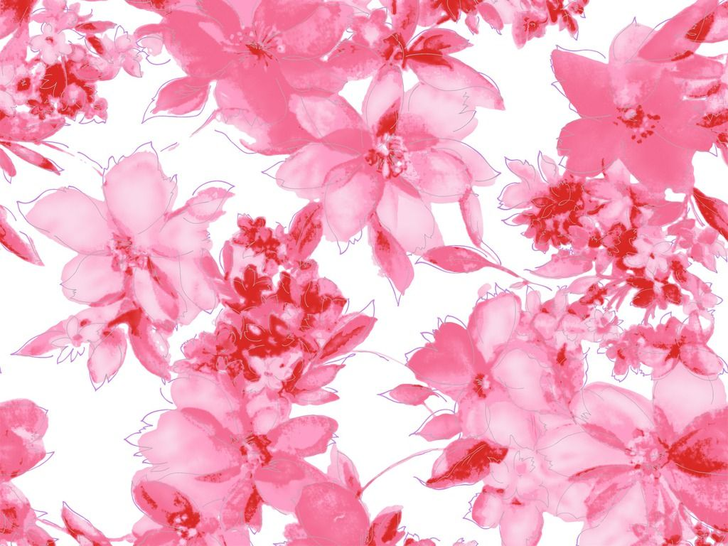 Pink Flowers Wallpaper Laptop Hd Ilustracion De Flor Flores