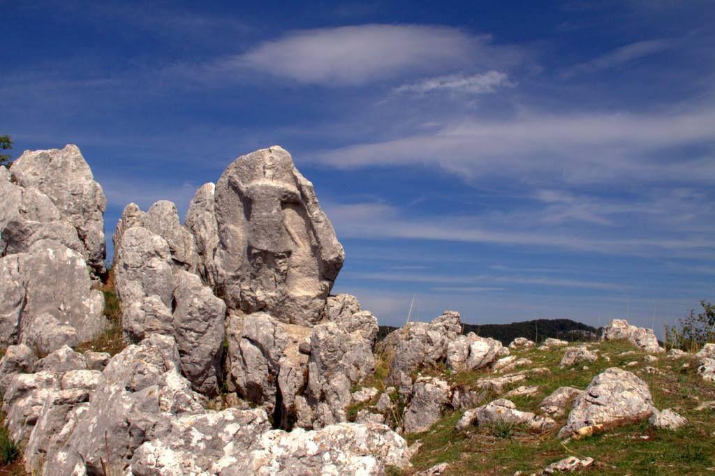 369 L Antece Guerriero Scolpito Nella Roccia Sant Angelo A