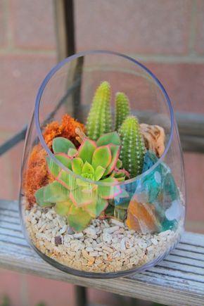 sukkulenten im glas im blickfang kreative deko ideen mit pflanzen pflanzen. Black Bedroom Furniture Sets. Home Design Ideas