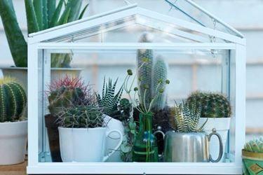 mini serre da balcone | idea per decorare | Pinterest | Diy ...