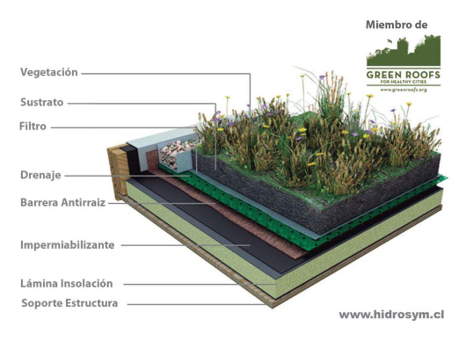 Dise o de techos verdes hidrosym techos verdes - Cubiertas vegetales para tejados ...