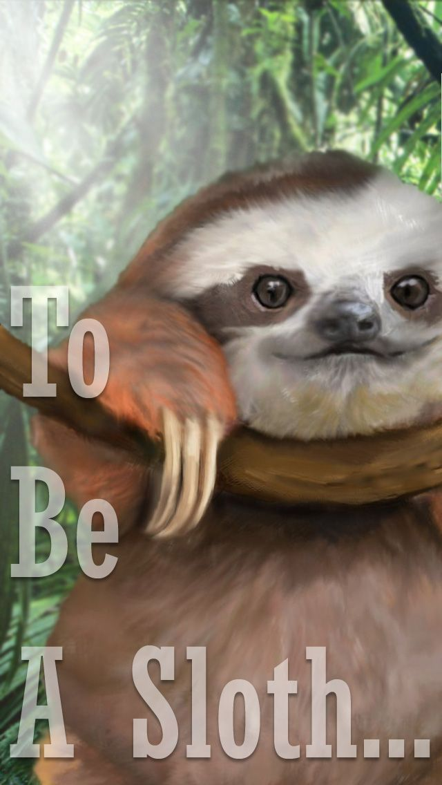 Sloth Wallpaper made by request, because why not? [iPhone