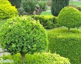 Www Rustica Fr Video Que Faire En Avril Au Jardin Jardins