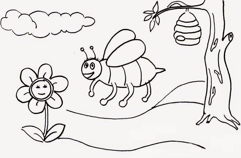 Mewarnai Binatang Untuk Anak Tk Gambar Gambar Hewan Lebah