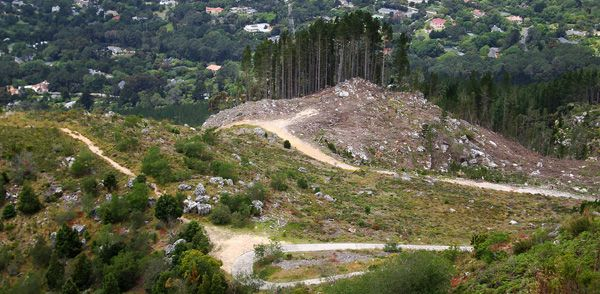 Things To Do in Cape Town – Hoerikwaggo Trail. Hg2Capetown.com.