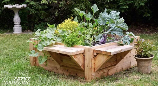 Raised Bed Designs for Gardening: Tips, Advice, and Ideas ...