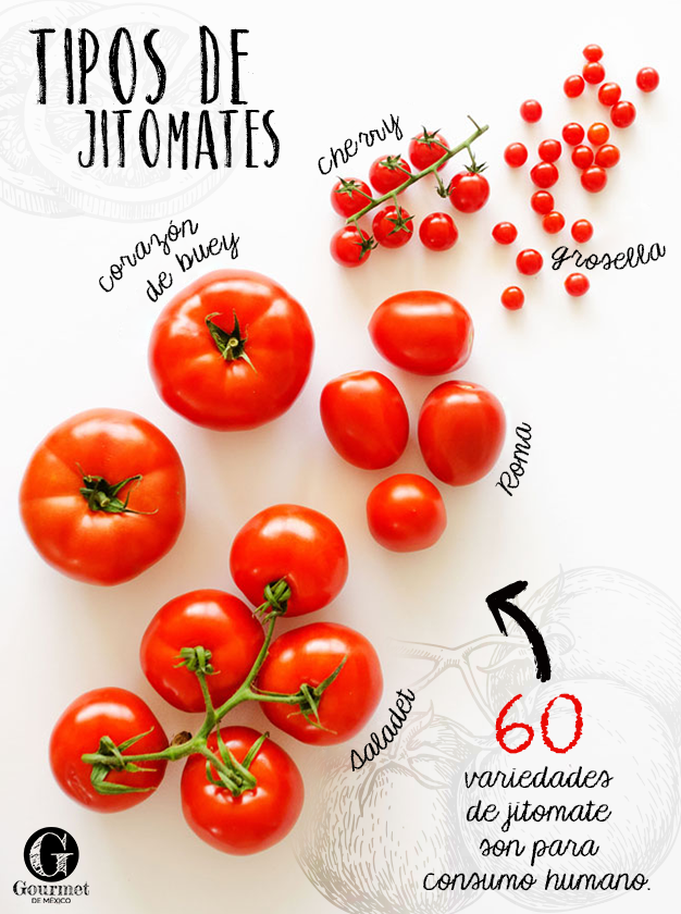 580 Ideas De Variedad De Frutos Y Verduras Verduras Frutas Y Vegetales Frutas Y Verduras