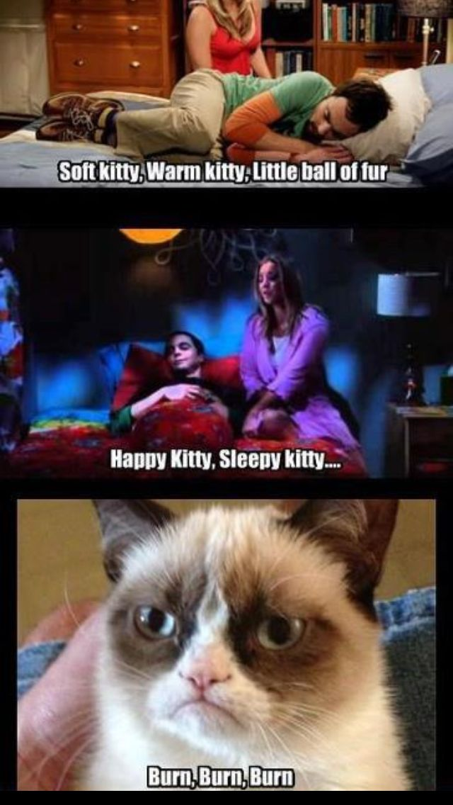 the big bang theory soft kitty grumpy cat