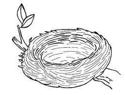 Image Result For Coloring Pages Of Cute Bird About To Leave Nest
