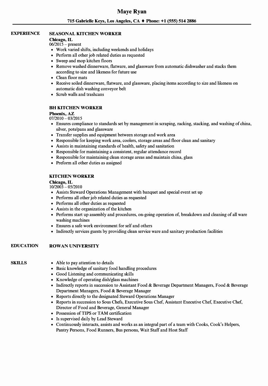 Porter Job Description Resume Fresh Kitchen Worker Resume