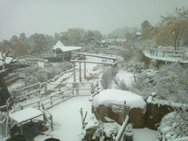 Fun zoo with great seasonal activities | Cheyenne mountain ...
