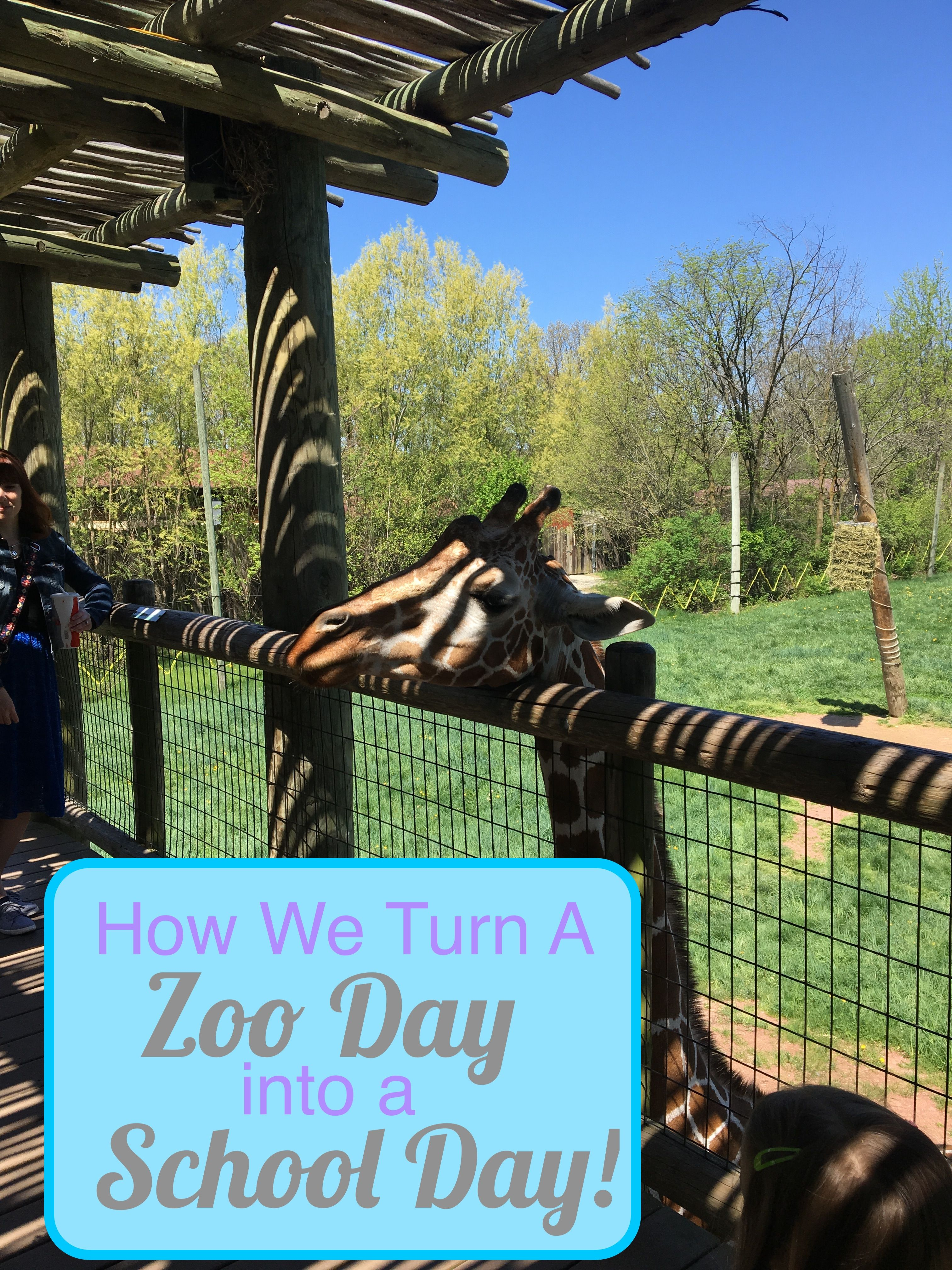 A Guide To Dialectic Learning At The Zoo