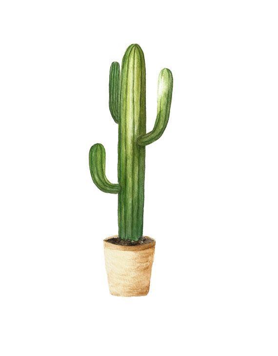 Succulent watercolor cactus art succulent painting cactus painting ...
