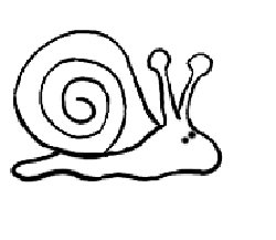 How To Draw Snails Drawing Tutorials