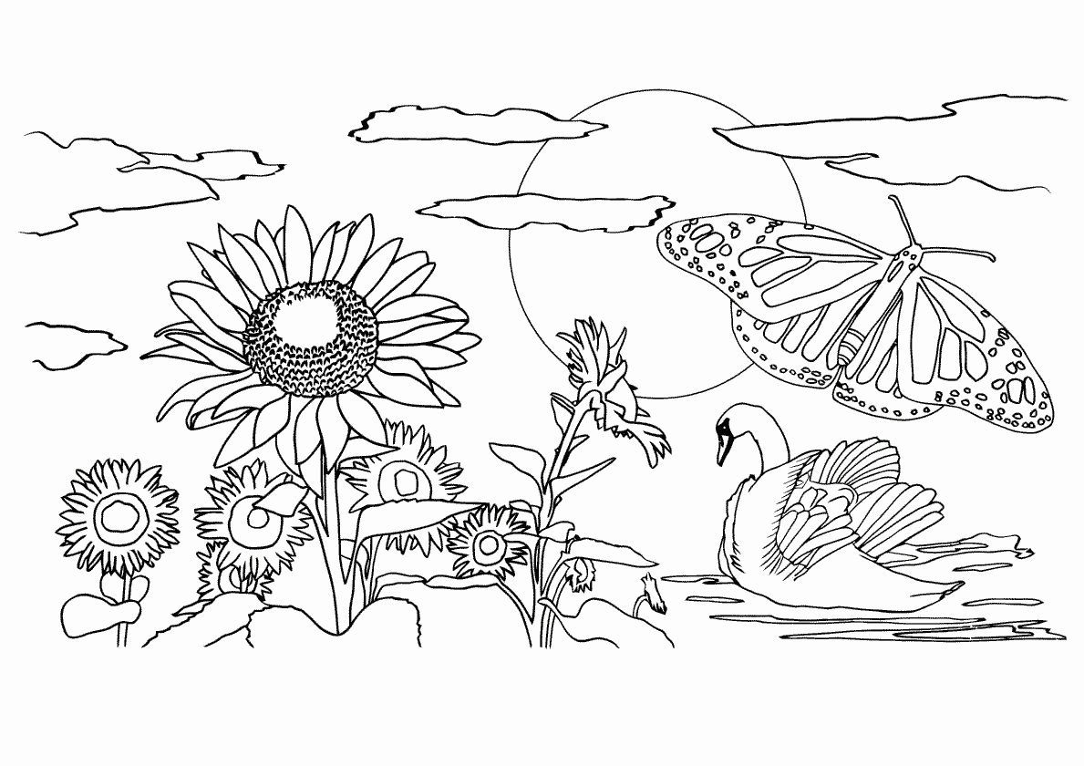 Nature Drawing Coloring Inspirational Fall Scenery Coloring Pages