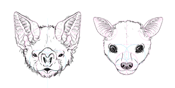 how to draw bat face head 10 draw1 in 2018 pinterest bats
