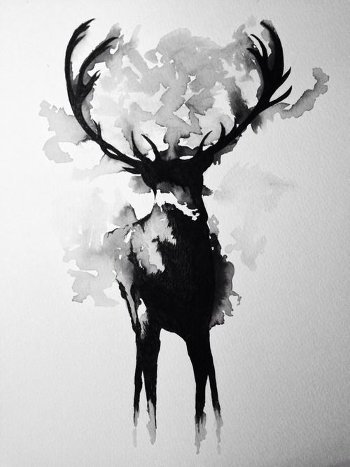 Cerf Aquarelle Noir Et Blanc Wasserfarben Kunst Kunst Mit Tinte