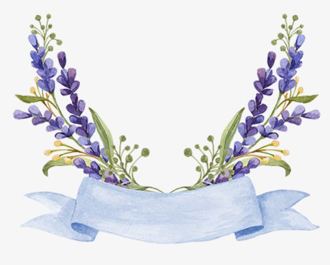 Beautiful Border Border Frame Category Border Png Transparent Clipart Image And Psd File For Free Download Flower Background Wallpaper Floral Logo Design Flower Painting