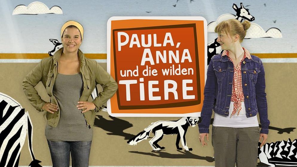 Paula Anna Und Die Wilden Tiere Wildlife Reportagen Fur Kinder Br De In 2020 Wilde Tiere Tiere Tiere Wild