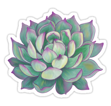 Succulent Plant Sticker In 2019 Stickers Stickers