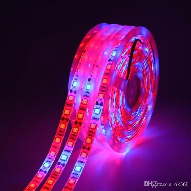 Led Strip Light Full Spectrum Grow Lights Plant Growth Lamps For Greenhouse Hydroponic Growing Battery Operated From Pow Led Flower Grow Lights Led Grow Lights