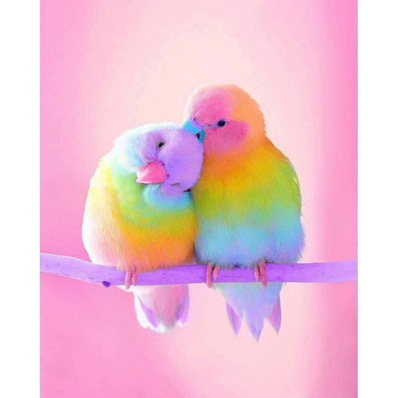 Diamond Painting - Rainbow Parrot – Floating Styles