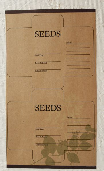 seed pack