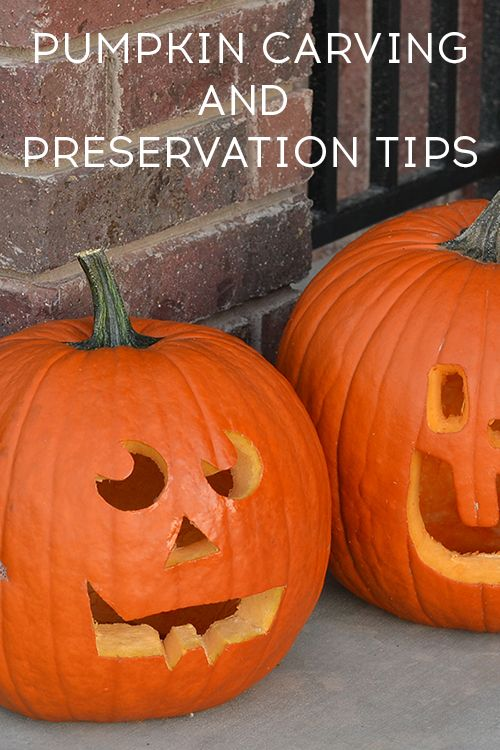 Pumpkin carving and preservation tips - Ask Anna