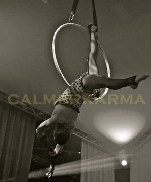 Acrobats to hire to cover all themes and events  Hire floor