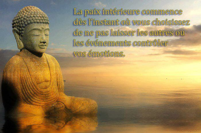 Image Du Tableau Citations De Sonia Der Paroles De Bouddha