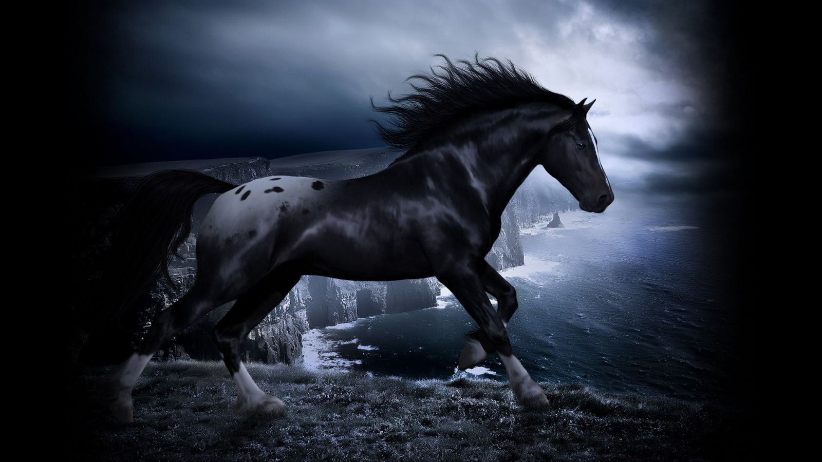 Black Spotted Horse With Images Horse Wallpaper Horses Fantasy Horses