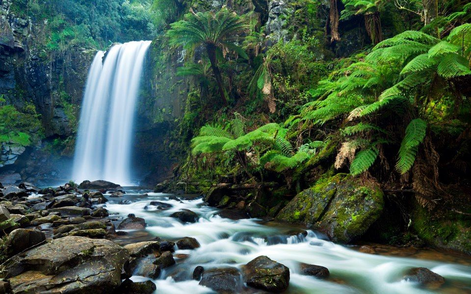 Waterfall Waterfall Wallpaper Waterfall Fall Wallpaper