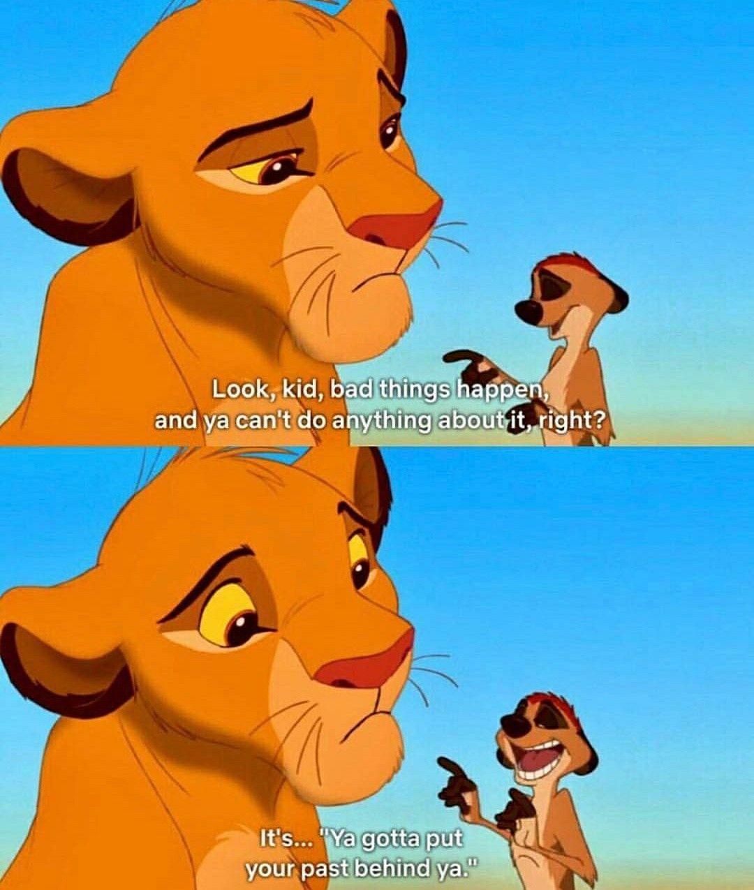Hakuna Matata Timon Disney Quote Lion King Lion King Meme Lion King Movie