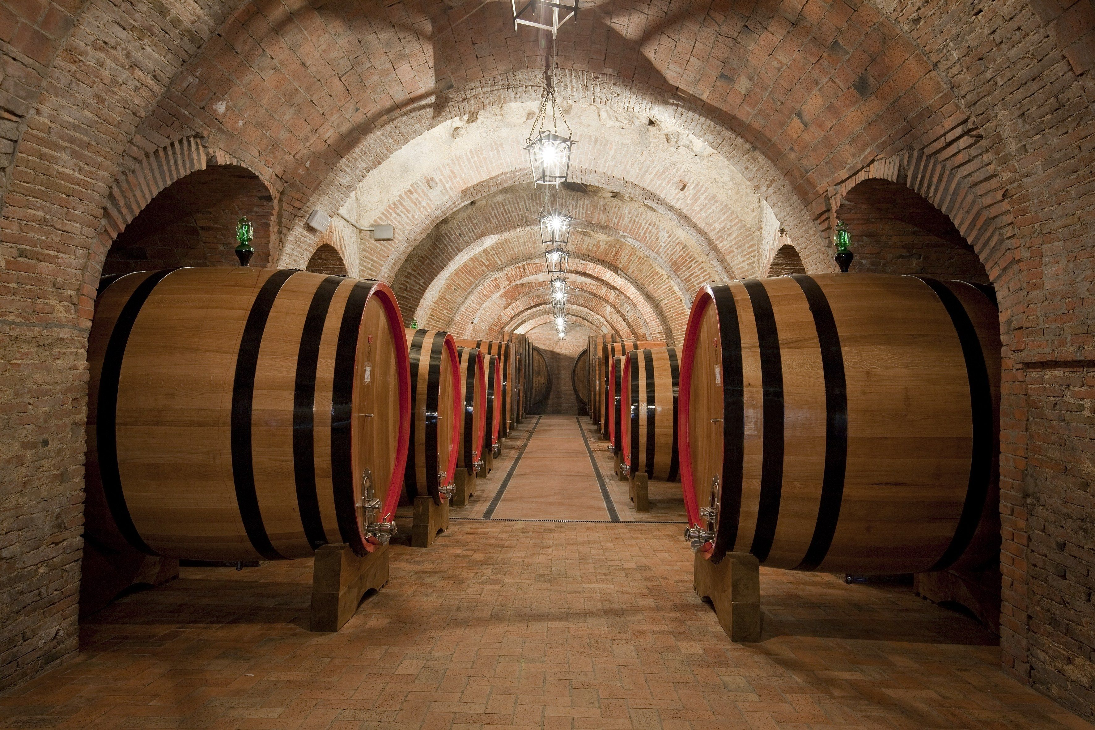 Cantina Fattoria della Talosa (Montepulciano, Italy): Hours, Address, Winery & Vineyard Reviews - TripAdvisor