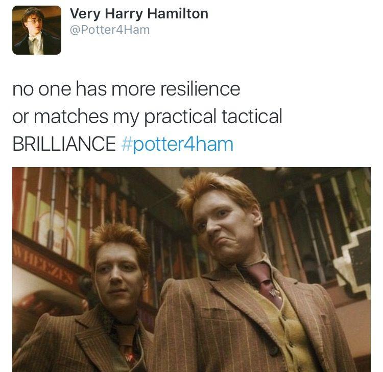 Hamilton Tumblr Harry Potter Funny Harry Potter Fan Harry Potter Fandom