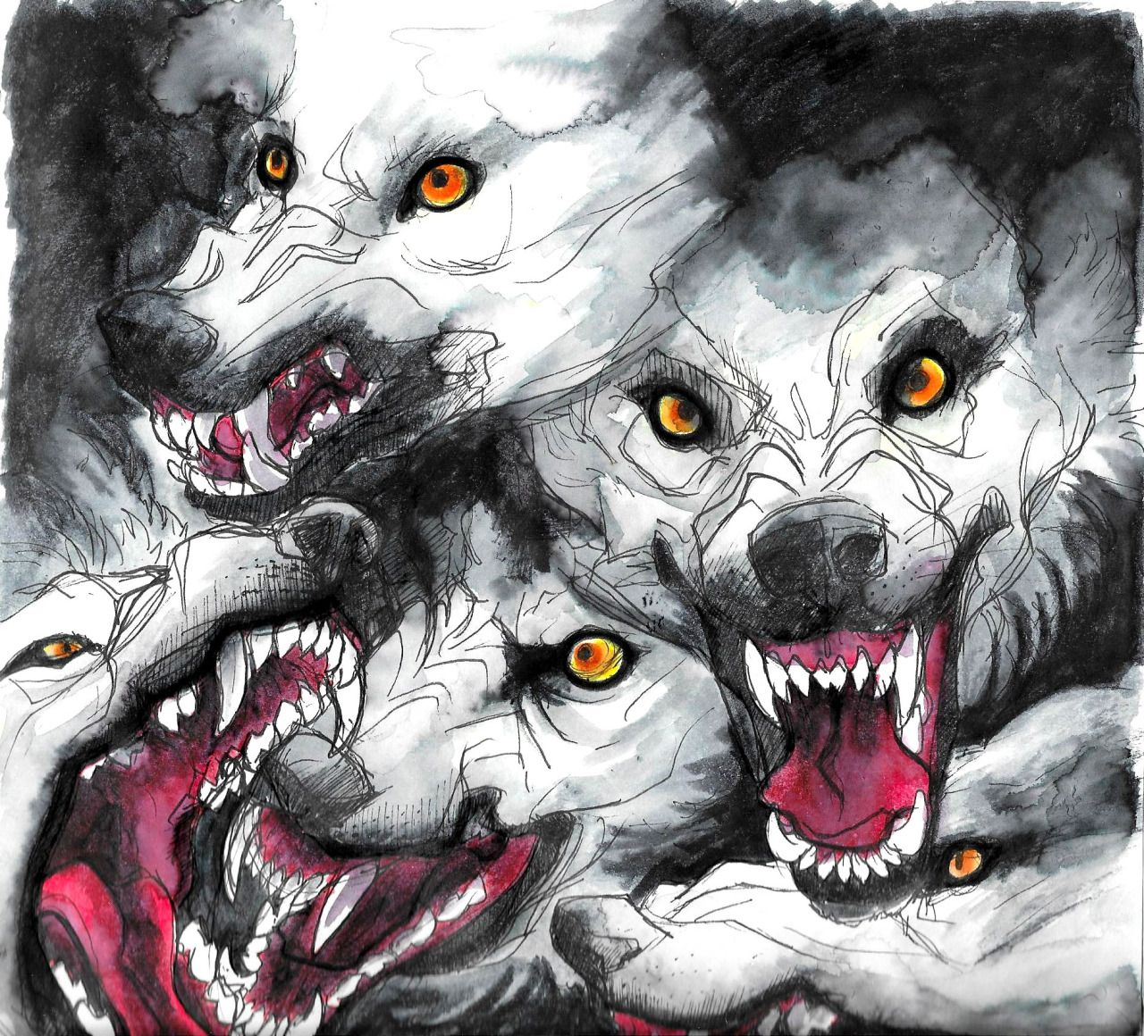 Angry Wolf Tumblr | Wallpapers Style