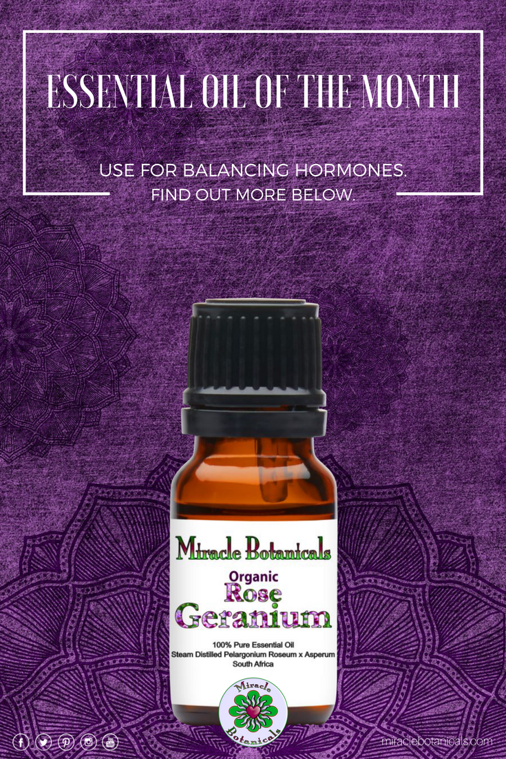 Essential Oil of the Month: Rose Geranium essential oil is well-known as an oil that can help hormonal swings caused by PMS or menopause. It appears to have a balancing effect on hormones as well as alleviating associated symptoms such as pain and fatigue.  #pms #bloating #cramping #cramprelief #PMSrelief #thyroidproblems #thyroidissues #thyroiddisease #hormonebalance #pcosjourney #pcos #reiki #aromatherapy #essentialoil #holisticliving #wellness #consciousliving #mompreneur #chakrabalancing