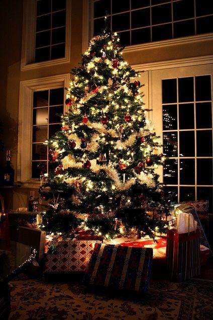Christmas Santa Claus Pinterest Christmas tree, Holidays and