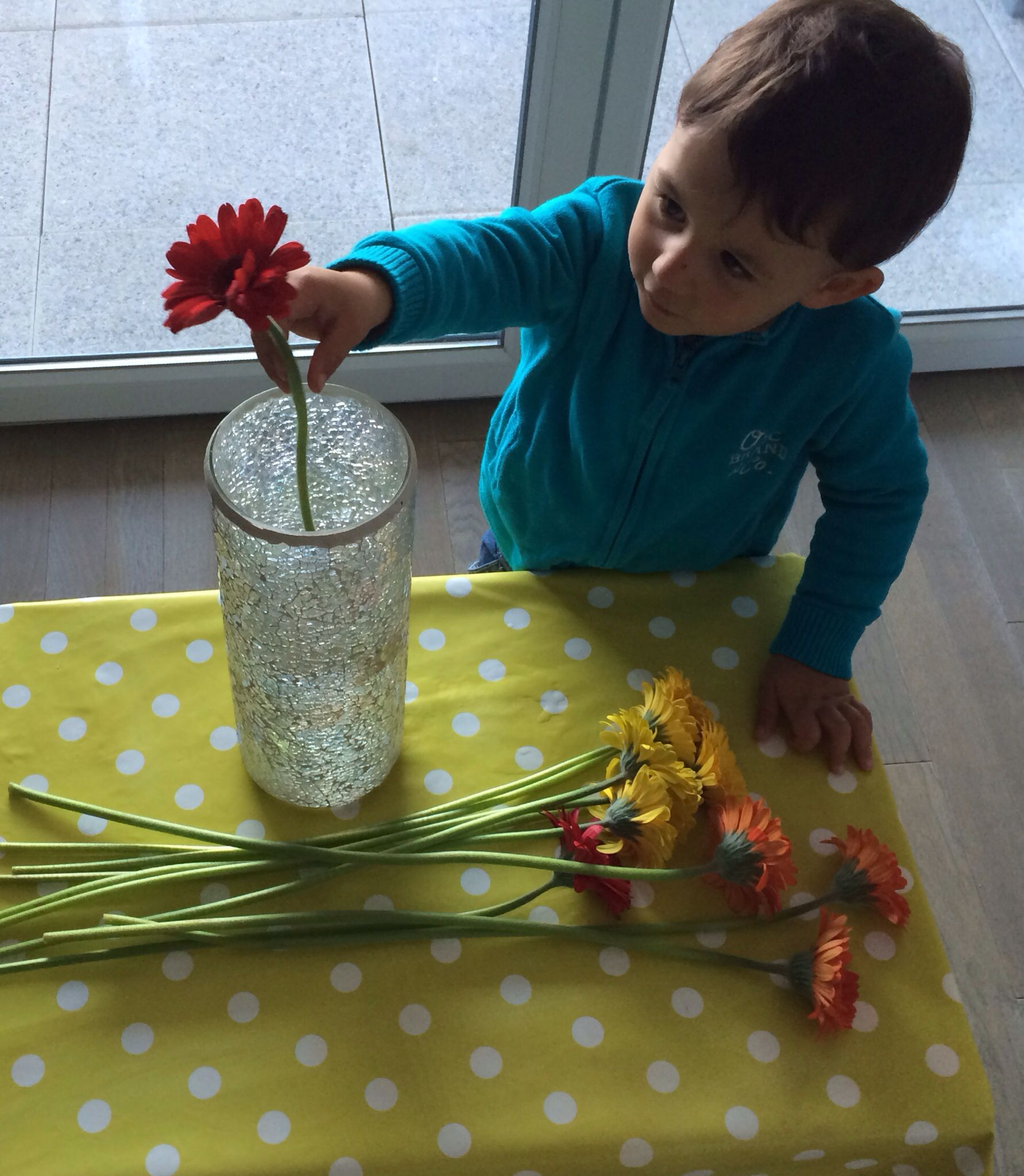 Arranging His Own Bouquet Montessori Practicallife With